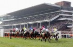 Cheltenham-betting-tips