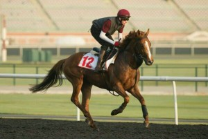 Ruler Of The World & Joseph O'Brien train at Meydan. Image credit Edward Whitaker