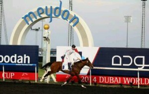 Toast of New York wins in Dubai. Image credit @Channel4Racing