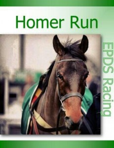 RIP Homer Run. Image credit @EPDS_Racing