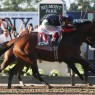 Tonalist wins Belmont Stakes by a head