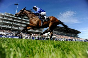 The 2014 Epsom Oaks winner Taghrooda. Image credit @Channel4Racing