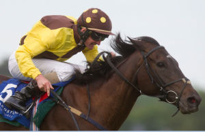MissUnited retired through injury. Image credit @Channel4Racing