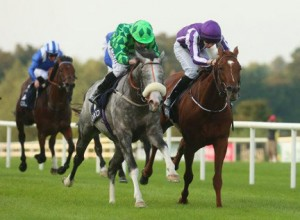 A neck separates The Grey  Gatsby & Australia in Irish Champion Stakes. Image credit @PA_Stables
