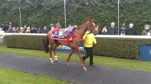 Silviniaco Conti looks cool before the race. Image credit @Channel4Racing